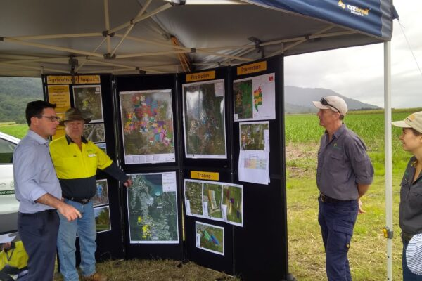 Minister Littleproud meets with cane growers